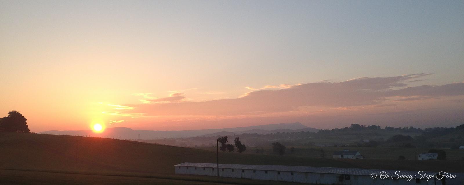 views-on-sunny-slope-farm-1-11