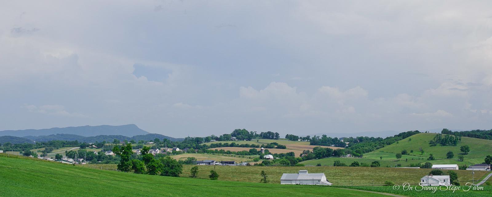 views-on-sunny-slope-farm-2